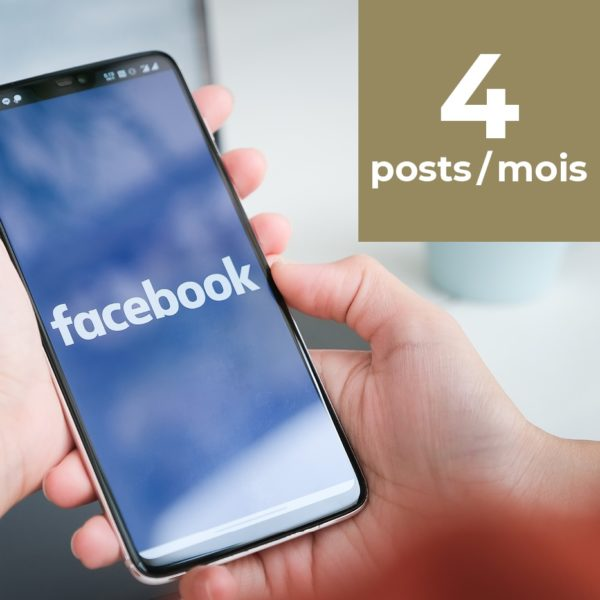 Facebook 4 posts