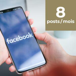 Facebook 8 posts