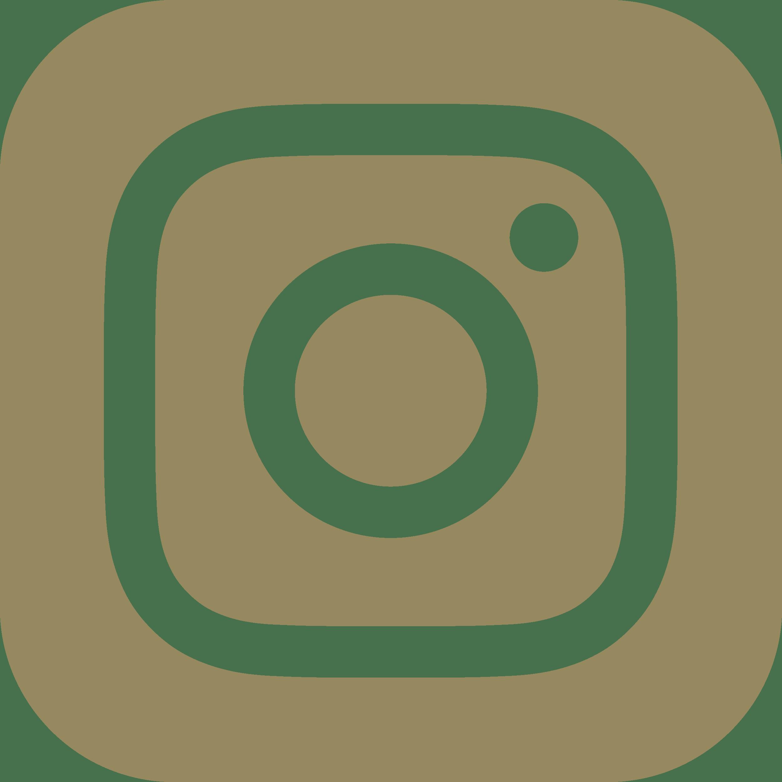 Icone instagram d_Plan de travail 1